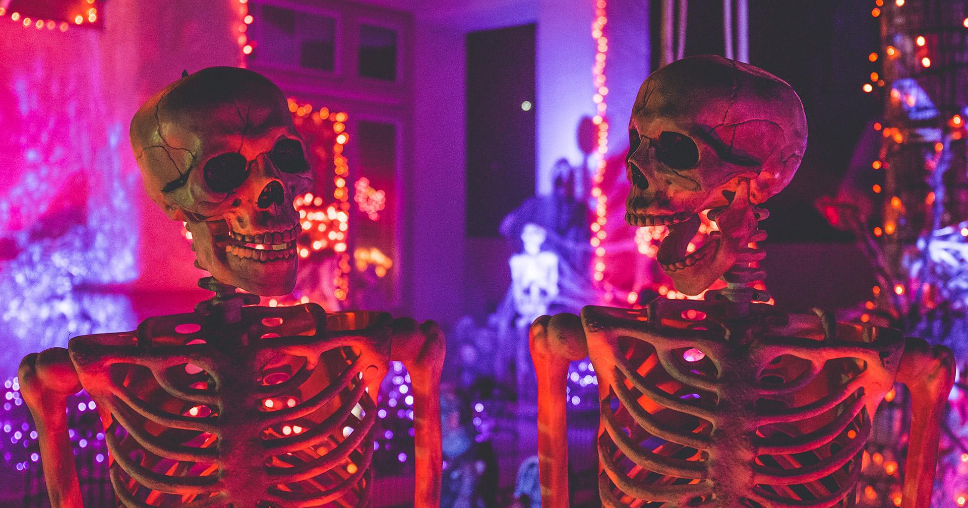 Skeleton_2